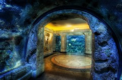 Entering Another World (Stuck in Customs) Tags: world blue fish lines composition swim photography aquarium bay design shark amazing cool nikon shoot photographer underwater nemo shot angle image lasvegas gates unique background space details nevada perspective picture deep scuba edge stunning pro jelly dreamy framing portfolio capture reef mandalaybay incredible hdr mandalay sharkreef coralreef magica stuckincustoms d3x treyratcliff