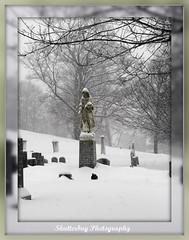 Watch Over Me..... (cheryl c.) Tags: winter snow beautiful quote dreary powershot wenhamcemetery beautifulexpression goldstaraward multimegashot ifindcemeteriescomforting peacefulandquiet dedicatedtomybrotherwhodied9yearsagoonthe29th