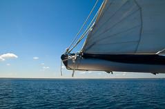 162/365 sailing