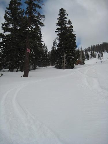 Fresh Tracks at Alpine