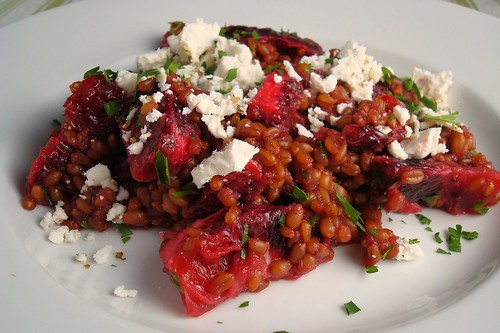Blood Orange and Wheat Berry Salad