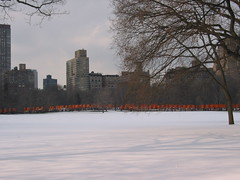 IMG_3687 (jebi.jeza) Tags: nyc winter orange newyork cemetery gates centralpark christo jeanclaude fungwah chinesegibberish