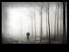 A Journey Man's End (PhilB_PbArtWorks) Tags: blackandwhite mist art fog canon march moody creative philb dapagroupmeritaward3 pbartworks