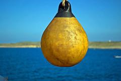 Comino buoy (otbcnmtd1) Tags: blue sea yellow ferry malta buoy gozo comino buoyant