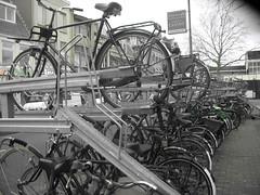 Haarlem_Bike stands