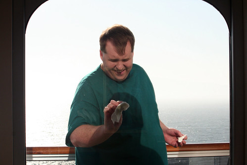 Mike Tidies the Window (Cabin 1101, Carnival Splendor)