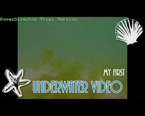 My First Underwater Video