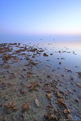 uqair III (Ibrahim Almulhim ) Tags: blue red seascape color green canon landscape eos google flickr ibrahim efs 1022mm f35 hofuf alhassa   almulhim uqair