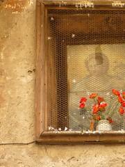 a memory of her face (SteffenTuck) Tags: perugia umbria onholidays walkingaroundthecitycentre