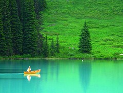 Emerald (lovemyblackcat) Tags: canada reflection water field rockies boat alberta yoho emeraldlake canadianrockies yohonationalpark lakereflection flickrdiamond