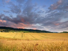 Horehron, Slovakia (Martin Sojka .. www.VisualEscap.es) Tags: blue trees green nature colors grass clouds landscape evening wheat vivid olympus fields slovensko slovakia crops grad zuiko hitech e30 1260 zd brezno 1260mm podkorenova