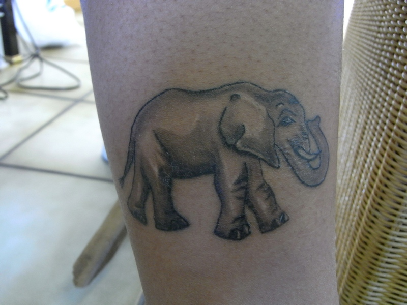 ELEPHANT. JENNY. RUBY. TATTOO
