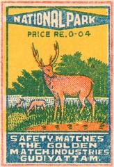animalallumettes 022