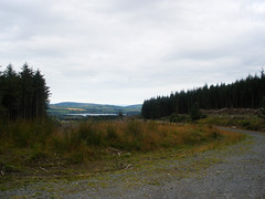 Wicklow Mountains (St.Stello) Tags: ireland pinky wicklowmountains cowicklow