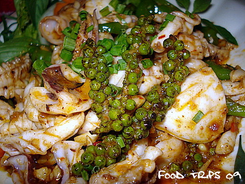 close up of fried squid