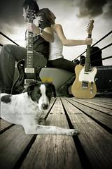 the waiting (mauricio cevallos www.mauriciocevallos.com) Tags: music dog art ecuador guitar perro musica guitarras