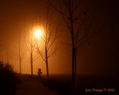 Orb of light (jde95tln) Tags: california light usa silhouette northerncalifornia fog digital canon rebel lights foggy bayarea diablo digitalrebel antioch peasoup densefog xti 400d canonrebelxti canon400d naturessilhouettes