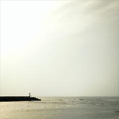 _誓言的殘骸。 (eliot.) Tags: life live hsinchu taiwan jeanne eliot 落海的海誓 迷路的山盟