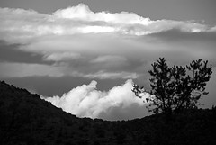 Clearing After Two Days of Rain (john weiss) Tags: arizona bw sedona fineartphoto 18200vr d80 baldwinhike sedona2614