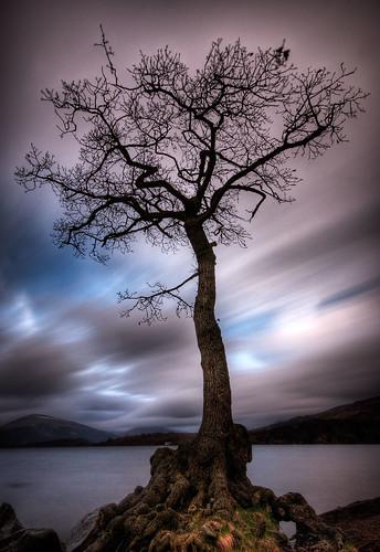 Milarrochy Bay, Loch Lomond (by ouldm01)