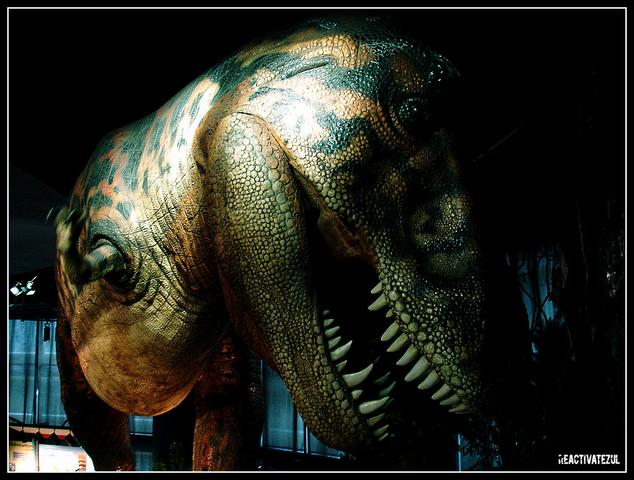 Geotime-Formation-2-T-Rex