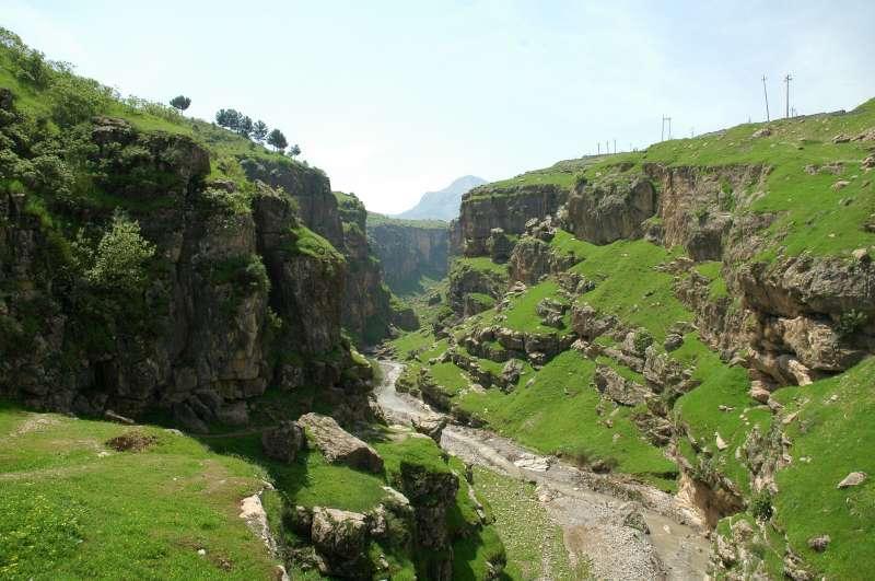صور جميلة من العراق الجميل 3368622955_b196a0bde