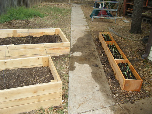 Raised Beds (Design your own!)