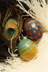 003peacock1a (jutkacsak) Tags: easter hungary egg hsvt tojs paintedeggs