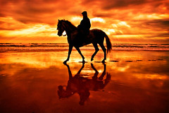 A man and his horse ([Kantor]) Tags: sunset horse reflection beach canon contraluz caballo atardecer playa andalucia reflejo cadiz andalusia rider jinete andalusian horseman kantor sanctipetri labarrosa 400d ltytr1