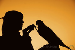 The Falconer Secrets -   ( Maitha  Bint K) Tags: aplusphoto goldstaraward