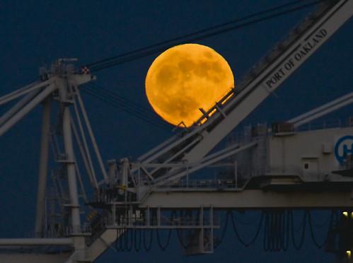 Moon Caught