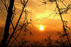 Summit Sunset (lantaw.com) Tags: sunset trek climb philippines olympus rizal rodriguez wawa montalban c4040z mthaponangbanoy