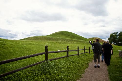 Viking Mounds