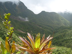 S6300998 (Robert Hoogveld) Tags: lake nature island rainforest reserve national caribbean tropics boiling dominica morne pitons vulcanic montane