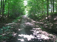 uhtoff_trail
