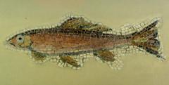 Red Mullet (Thorskegga) Tags: city red fish museum turkey greek design ancient pattern roman mosaic mullet classical british turkish halicarnassus decoraration