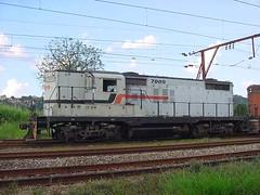 FPM 77 Locomotiva Fepasa 7009 (Fernando Picarelli Martins) Tags: efa ferrovia fepasa locomotiva década1950 locomotivadieselelétrica generalmotorsgmgp18 estradadeferroararaquara