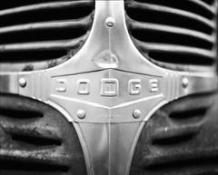 (dpietzuch) Tags: summer white black film truck automotive grill dodge 6x7 ilford 2009 ilovefilm mamiyarz67 panfplus50 dpietzuch 110mmf28