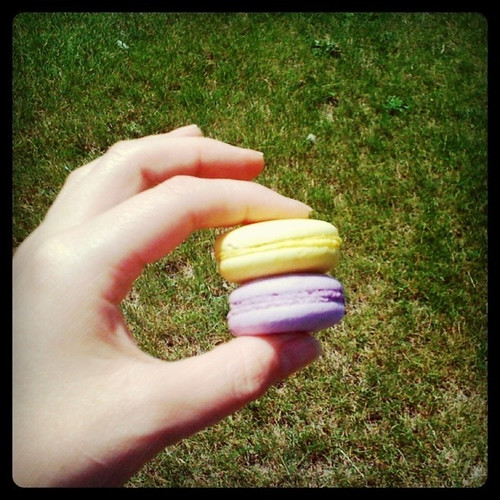 macarons from Erica