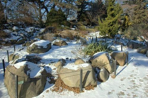 Rock Garden