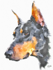 Doberman Pinscher (piker77) Tags: dog painterly art face animal digital photoshop watercolor painting interesting media natural retrato aquarelle digitale manipulation simulation peinture illusion virtual watercolour transparent acuarela tablet technique wacom ritratto stylized pintura portre  imitation  aquarela aquarell emulation malerei pittura virtuale virtuel naturalmedia bildnis    piker77wc arthystorybrush