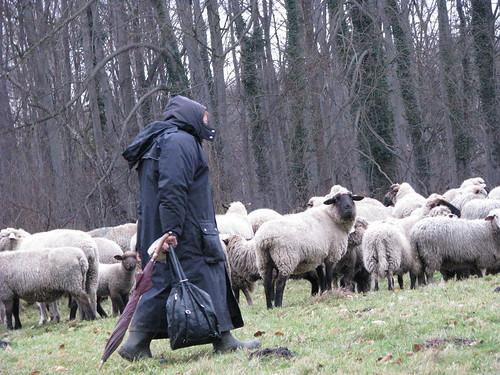9-A pastora e seu rebanho