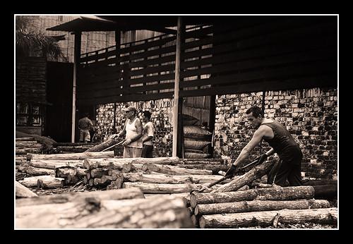 Photo Trip - Kuala Sepetang Charcoal Factory