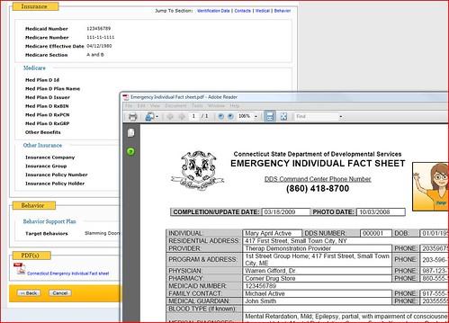 Screenshot of PDF form.