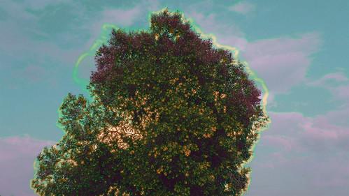 Psychedelischer Baum