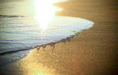 Evelicious (Sandra_R) Tags: sea summer sun beach portugal water canon sand 50mmf14 theperfectphotographer soltria