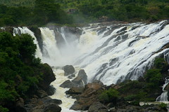 Karnataka Waterfalls 019