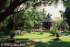 Chua Mot Cot (sntssche) Tags: pagoda asia southeastasia religion southeast chuamotcot earthasia worldtrekker onepillarpagode einpfahlpagode indiochina