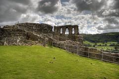 Dryslwyn Castle HDR (fillbee) Tags: castle wales carmarthenshire ruin prison ward fortifications arrowheads ceredigion siege trebuchet curtainwall llandeilo rivertowy cadw 1287 tripartite kingedwardi rhysapgruffydd llywelynabiorwerth anglonorman deheubarth reginaldgrey earledmundofcornwall sirwilliamdemontecaniso ystradtywi gruffyddaprhys maelgwynaprhys