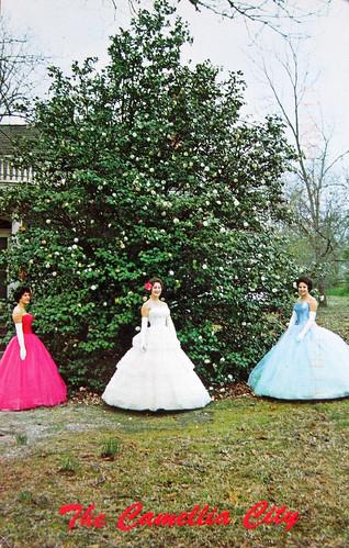 Camellia City: vintage kitsch